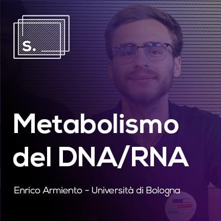 Enrico Metabolismo DNA